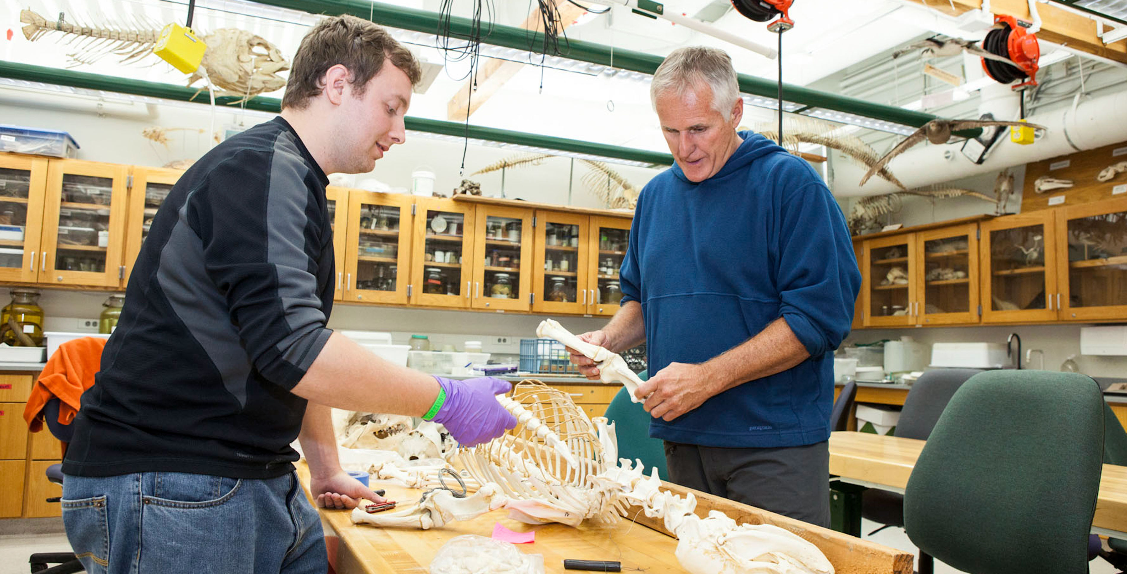 faculty advisor of the MLML Vertebrate Ecology Lab, Jim Harvey and student.